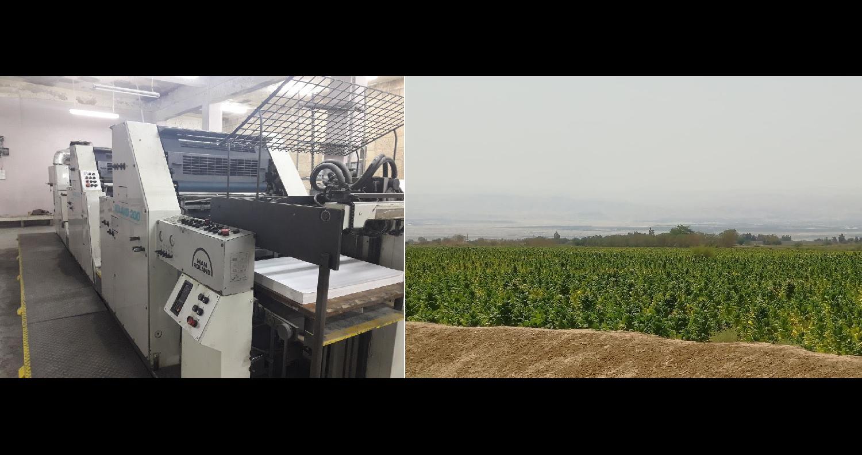 الجمارك تضبط مزرعة تبغ مساحتها أكثر من 200 دونم و 70 طنا من مستلزمات انتاج السجائر
