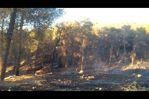 أخمدت كوادر الإطفاء في مديرية دفاع مدني شرق عمان وبإسناد من مديرية دفاع مدني غرب عمان مساء اليوم حريق شب في أعشاب جافة وأشجار حرجية بلغت مساحته حوالي