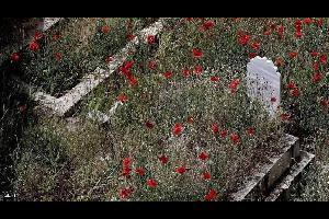 """واقعة غريبة شهدتها إحدى البلدات اللبنانية، فبينما كانت عائلة تستعد لمراسم دفن أحد أفرادها، فوجئت بعودة """"الميت"""" إلى الحياة مجددا."""