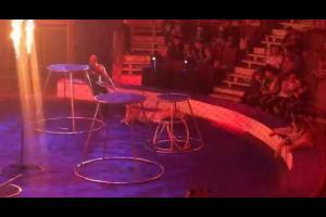 """""""نمر """"يصاب بنوبة صرع أثناء عرض السيرك في روسيا.. فيديو"""