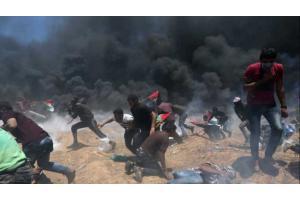 197 شهيدا وأكثر من 21 ألف جريح في غزة