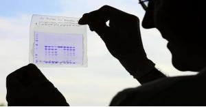 ابتكار هلام يمنع عودة الأورام الخبيثة