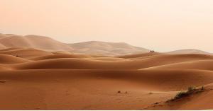 من أفريقيا إلى أميركا.. كيف تسافر الصحراء بين قارتين