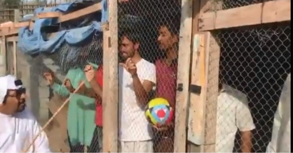 اماراتي يحتجز هنود بقفص للحيوانات لسبب غريب.. فيديو