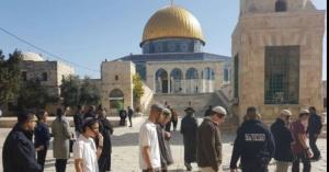 """""""سلطة الآثار الإسرائيلية"""" يقتحمون الأقصى"""