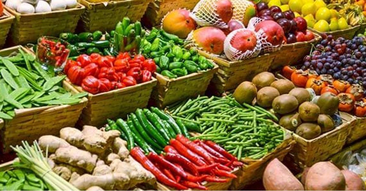 """""""الزراعة"""" توضح اتلاف منتجات في السوق المركزي (فيديو)"""
