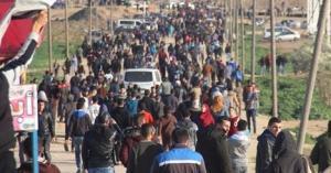 شهيدان و17 اصابة على حدود غزة (صور)