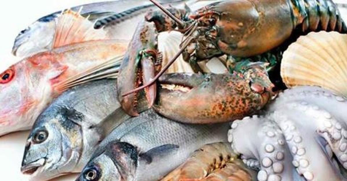 مصر تصدر الاسماك الى الاردن