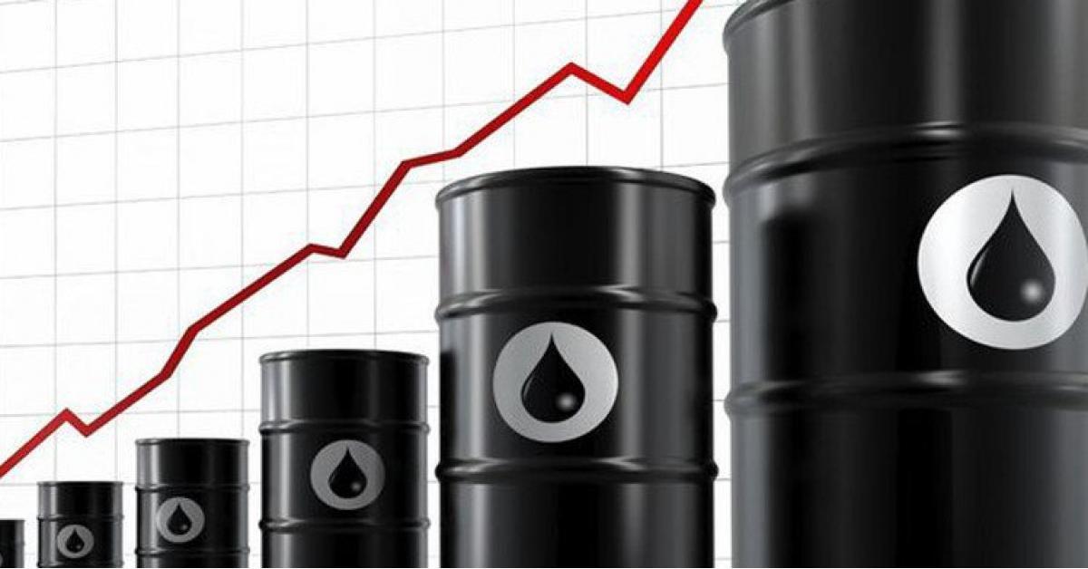 أسعار النفط اليوم الثلاثاء 12-2-2019