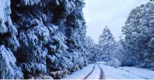 سكان هذه المناطق على موعد مع الثلوج الجمعة