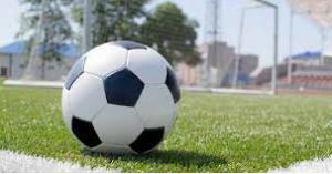افتتاح دوري المناصير للمحترفين لكرة القدم غدا