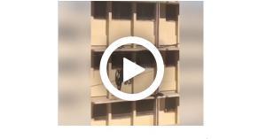 طالبان يعرضان حياتهما للخطر في مدرسة بعمان.. فيديو