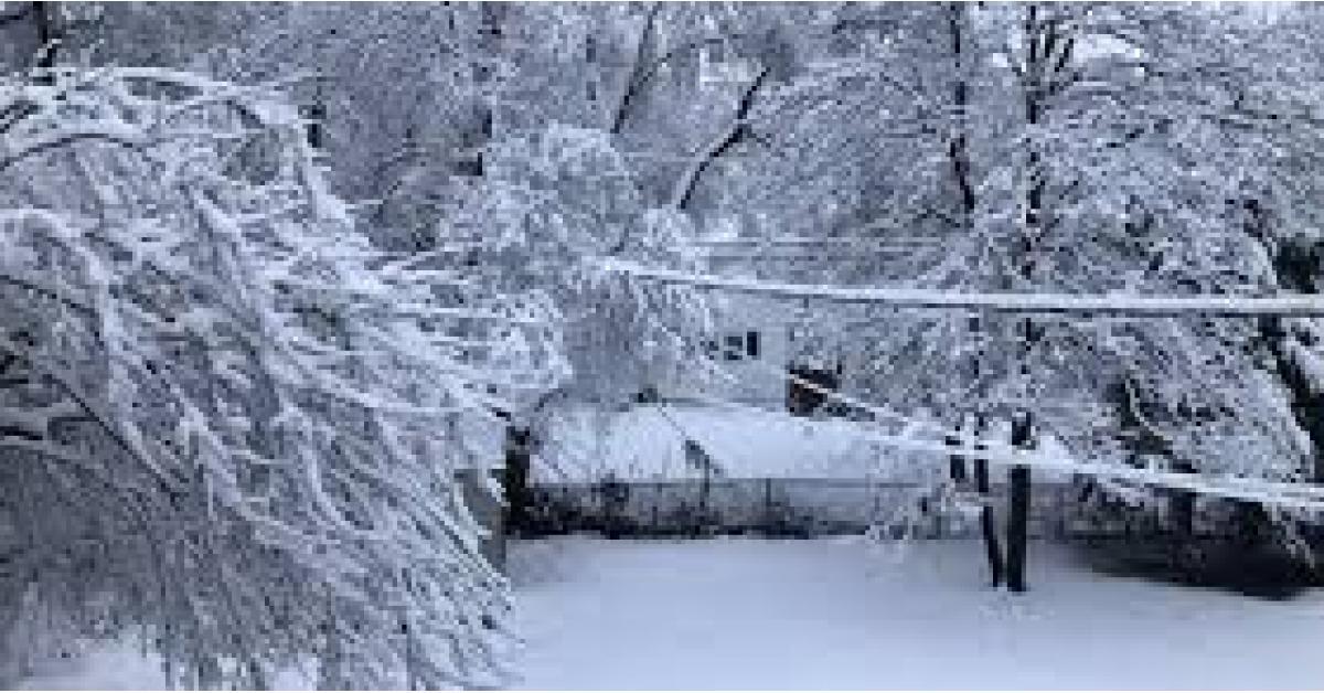 فرصة مرتفعة لتساقط الثلوج نهاية الاسبوع