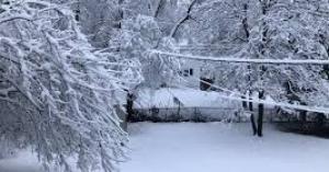 بدء تساقط الثلوج في الاردن (فيديو)