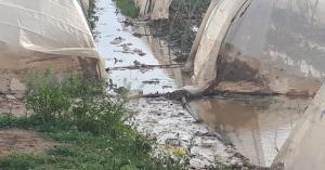 بالصور.. اضرار البيوت البلاستيكية في محيط سد الملك طلال