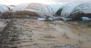 الكشف عن حجم الاضرار الاولية بعد اسالة مياه سد الملك طلال (صور وفيديو)