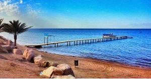 """منع اقامة """"مهرجان الانبطاح"""" على شاطئ العقبة"""
