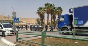 شاهد بالفيديو وفاة عاملين اردنيين اثر سقوط نخلة عليهما في