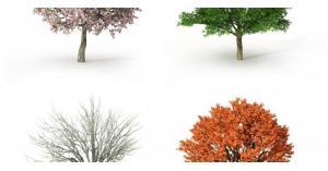 الشتاء والصيف يتقاسمون شهر نيسان