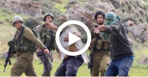 مستوطنون يعتدون على عائلة فلسطينية.. فيديو
