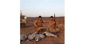 مذبحة جديدة لغزلان الأردن.. صور