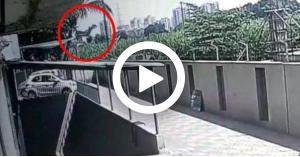 شاهد بالفيديو.. لحظة نجاة طفلة سقطت من الطابق 12