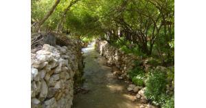 وادي الريان في الاردن.. صور