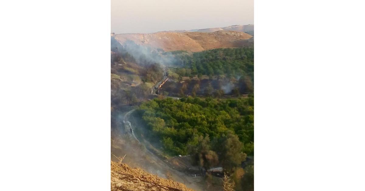 حريق بـ400 دونم بمنطقة الباقورة.. صور