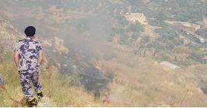 حريق أعشاب وأشجار مثمرة في وادي شعيب (صور)