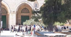 إصابة عدد من المعتكفين في المسجد الأقصى.. تفاصيل
