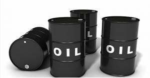 سعر النفط اليوم      اسعار النفط اليوم    النفط