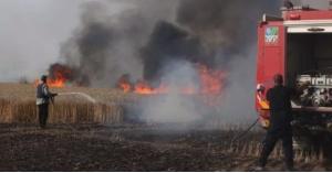 """""""نائب عراقي"""" يتهم الاردن بالوقوف وراء حرق المحاصيل الزراعية"""