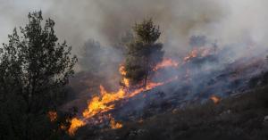 """""""مافيات التحطيب"""" تفتعل الحرائق و تزيد الضغط على الجهات المعنية"""