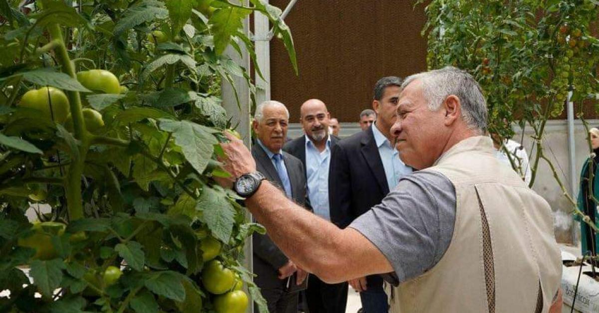 الملك يفتتح مشروعا زراعيا في المفرق (صور)
