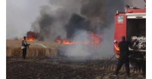 إخماد حريق أعشاب جافة في محافظة العاصمة