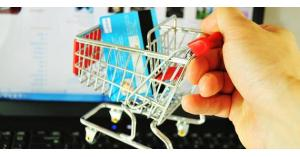 الحكومة: سنضبط شراء عبر الإنترنت
