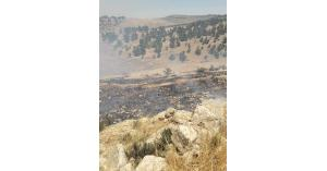 حريق  في جرش اكثر من ٣٠٠ دونم (صور)