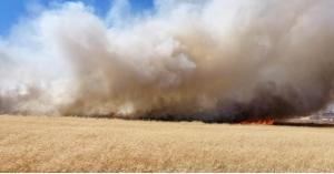 حريق كبير بمحاصيل في اربد فيديو