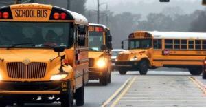 15 طلبا للحصول على تراخيص نقل مدرسي