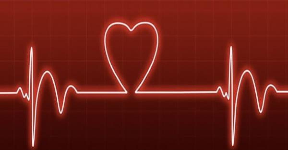 اسعار شبكة القلب في الاردن