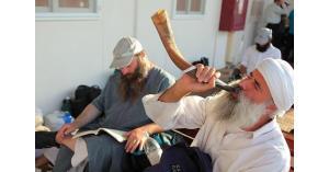 مصدر حكومي: الصهاينة تسللوا للمقام رغم إغلاقة والصور قديمة