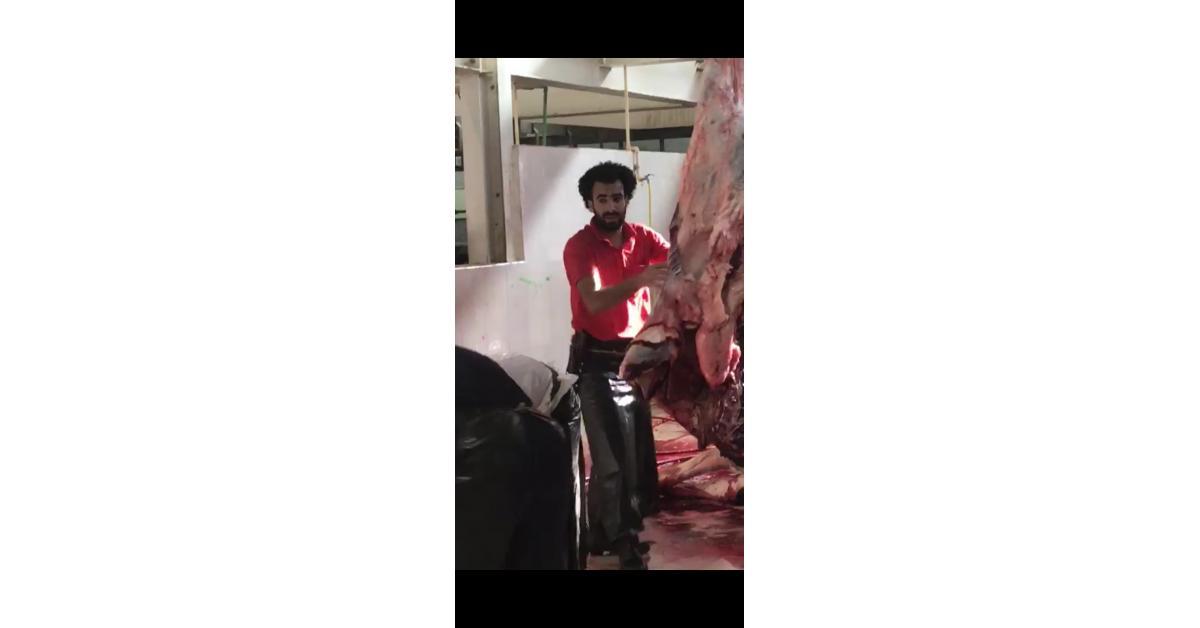 """بالفديو : اللاعب """"محمد صلاح"""" يشارك في ذبح الأضاحي"""