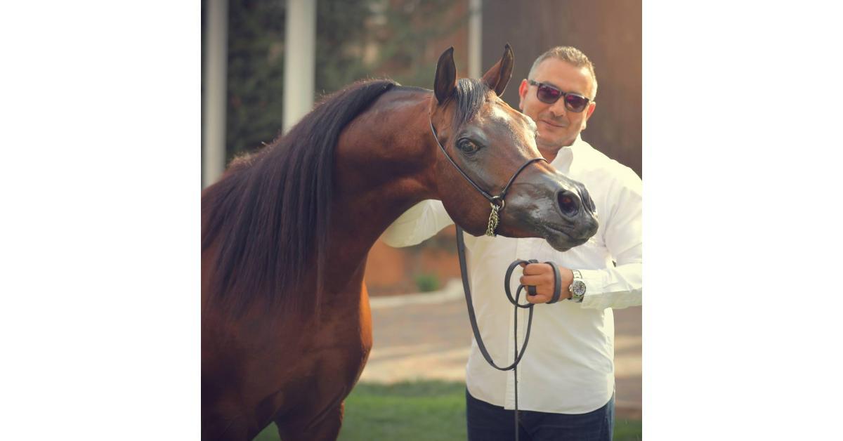 بطولة الخالدية لجمال الخيول العربية والمشاركة لمربط الخطيب