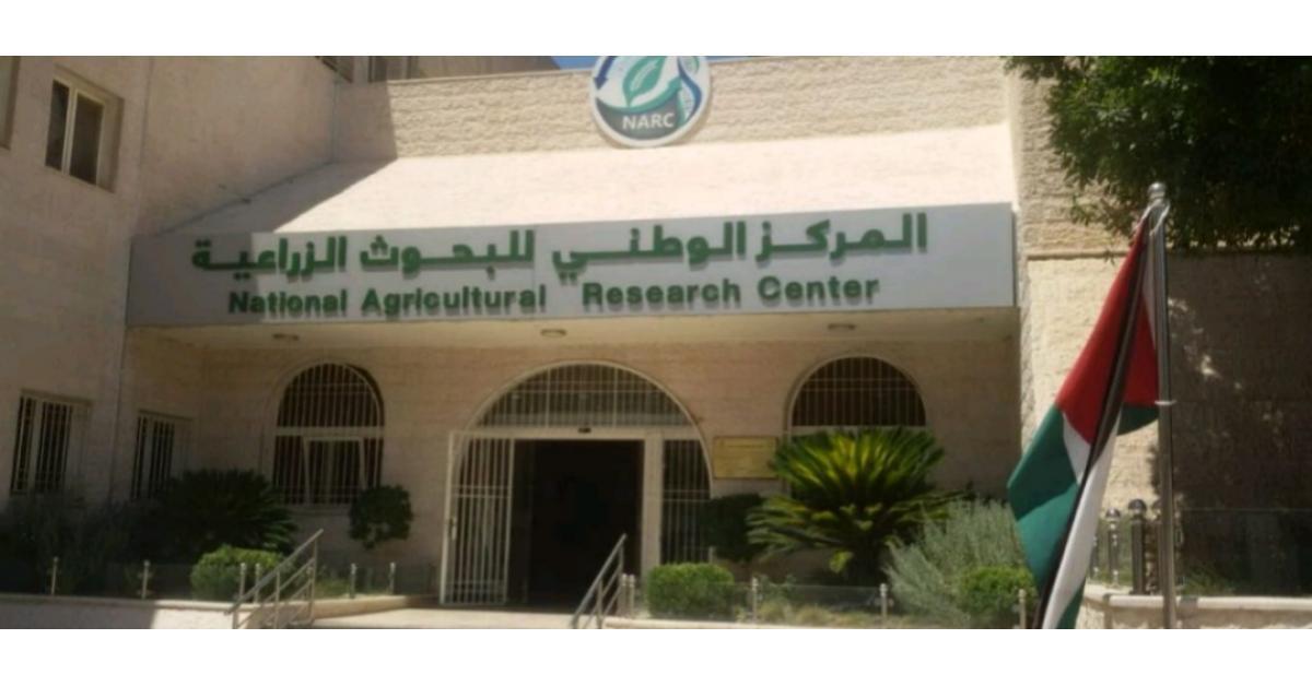 مركز البحوث الزراعية نسعى لتمكين المرأة في غور الصافي