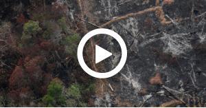 العالم في خطر (فيديو)