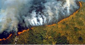 كندا تقدم 15 مليون دولار لمكافحة حرائق الأمازون