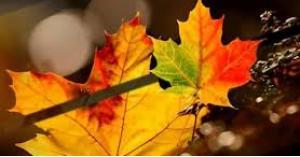 الاعتدال الخريفي الاثنين المقبل
