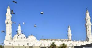 """أبرز معلومات عن """"قباء"""" أول مسجد في الإسلام"""