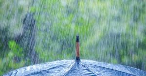 لماذا تبدو رائحة المطر طيبة ؟ ومن أين تأتي هذه الرائحة