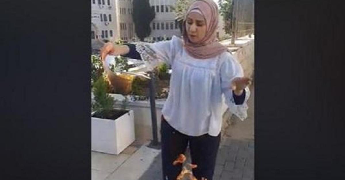 معلمة تحرق شهاداتها.. فيديو